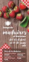 Temps de maduixes - 2018