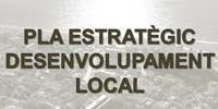 Pla estrat�gic local