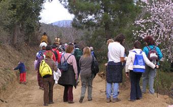 Els camins de Pedracastell són ideals per practicar el senderisme