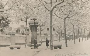 AMCM Nevada 1929